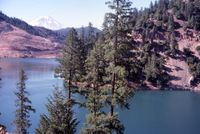Mt Shasta from McCloud Lake by Kushlis 7-1975