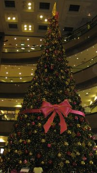 Singapore - Christmas Tree in Ngee Ann City by PHKushlis 2009 11 11
