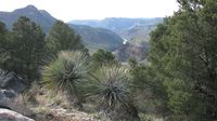 Arizona Salt River Canyon by PHKushlis 4-2010 IMG_1105