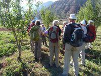 Linda Bigelow - Morocco Trek 10-2010 Apples!!! We picked our own - tart, juicy and crunchy Image-8645705-114320229-2-Web_0_cf069746e89dd1e5b9380e9ab1c04b9b_1