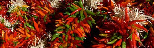 Slapdash veggies 028