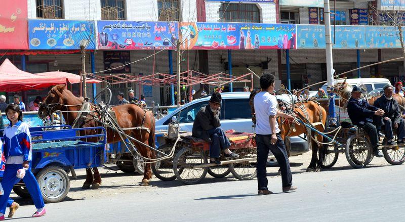 Kashgar street horses