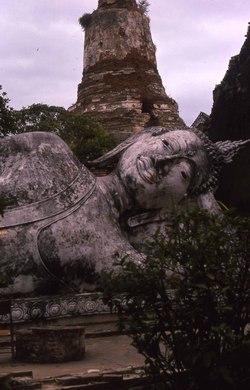 Ayutaya_buddha_head_ii_1974_jeh