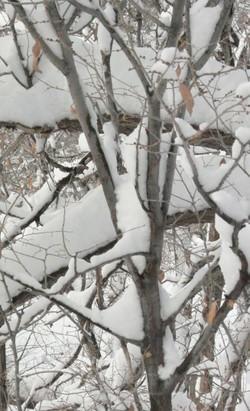 Snowku_iii
